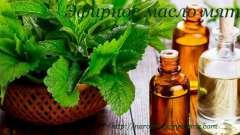 Ефірна олія м`яти властивості застосування