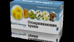 Лікарська рослина мати-й-мачуха: лікувальні властивості і протипоказання при застуді