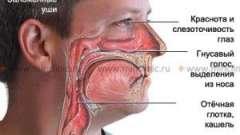 Закладеність носа без нежитю
